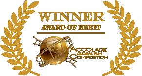 Accolade-Merit-logo